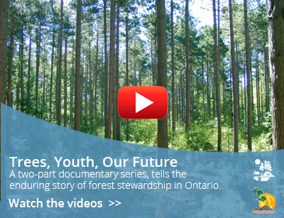 trees youth future video