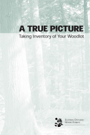 A True Picture: Taking Inventory of Your Woodlot