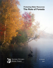 Protecting Water Resources: The Role of Forests