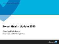 Forest Health Update 2020 - Ontario Ministry of Natural Resources and Forestry - 2021 Pest Review Presentation