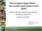 The European Gypsy Moth...Just Another bad memory from 2020?