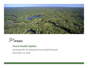 Ontario Forest Health Update
