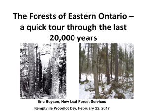 The Forests of Eastern Ontario - A Quick Tour Through the Last 20,000 Years