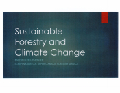Sustainable Forestry and Climate Change