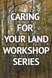 Caring For Your Land Workshop Series: Ice Storm Residential Tree Care