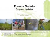 Forests Ontario Program Updates